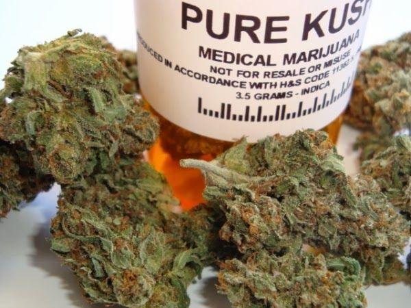 medecins-formation-weed-patient