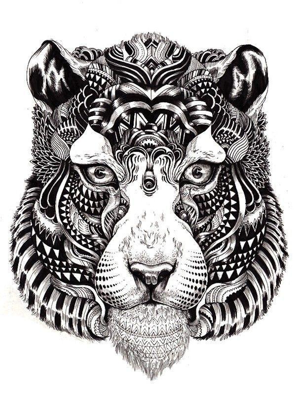 Iain Macarthur lion