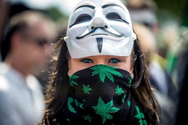 cannabis manif