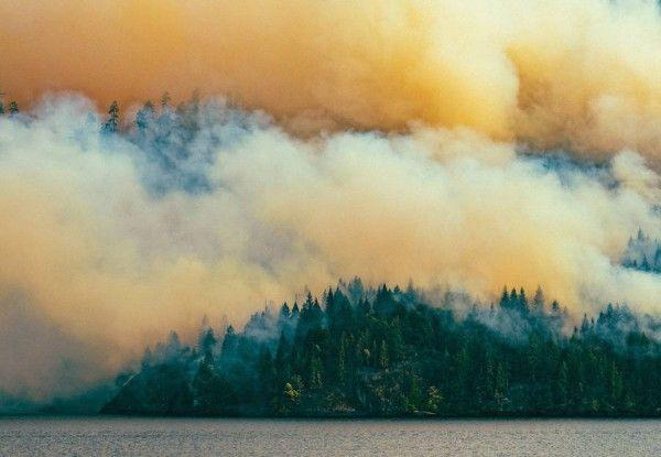 Circa-1983-Dog-Mountain-Forest-Fire-02