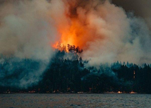Circa-1983-Dog-Mountain-Forest-Fire-06