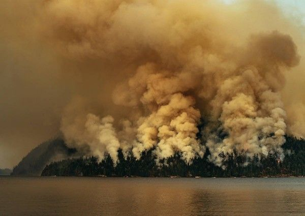 Circa-1983-Dog-Mountain-Forest-Fire-08