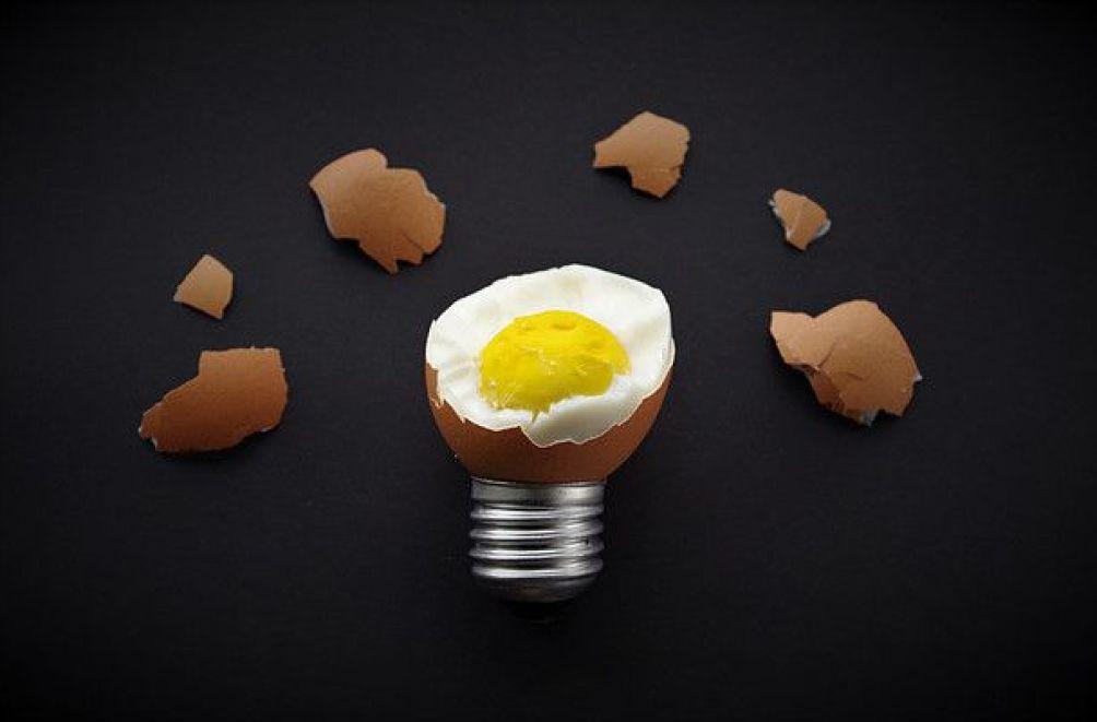 omnifood-loeuf ou la poule