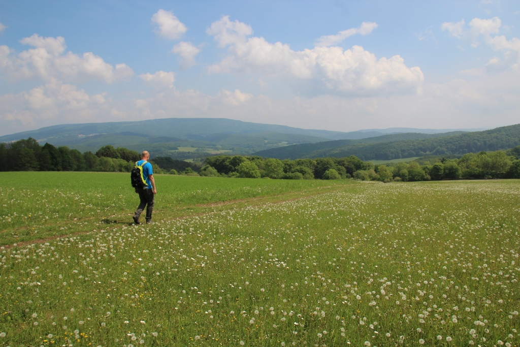 Grimmsteig: wandelen in het land van de gebroeders Grimm