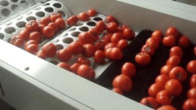 Photo of Estados Unidos quiere vender más máquinas agrícolas a México