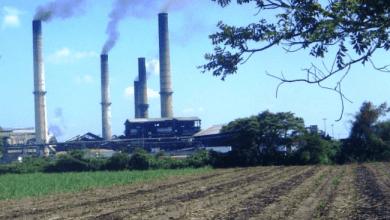 Photo of Venden dos ingenios azucareros a 1,390 millones de pesos