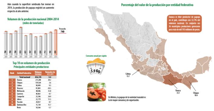 Gráfico: Sagarpa. México participa con una tercera parte de las exportaciones globales de papaya y sus ventas externas representan el doble frente al segundo exportador mundial, Brasil.