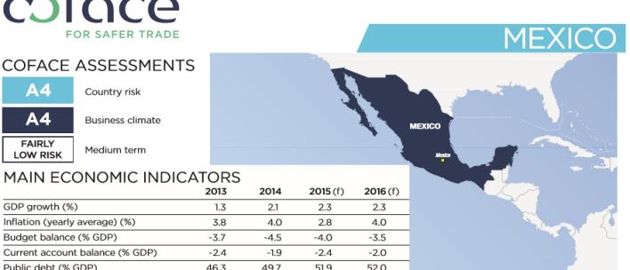 Gráfico: Coface. En el país ha habido escasez de algunos productos y un desaliento a la inversión.