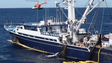 Photo of México puede imponer represalias a EE. UU. por US163 millones por caso de atún: OMC