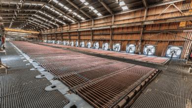 Photo of Crecen precios de los metales industriales