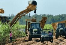 Photo of La SE abre cupo para exportar 90,718 toneladas de azúcar
