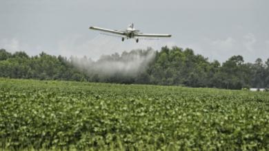 Photo of Alpek tiene una participación de 25% en el mercado de sulfato de amonio en México