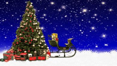 Photo of La analogía de Guajardo entre el TLCAN y las esferas del árbol navideño