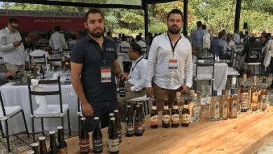 Photo of Cerveza artesanal del estado de Guanajuato se exporta a Europa y China