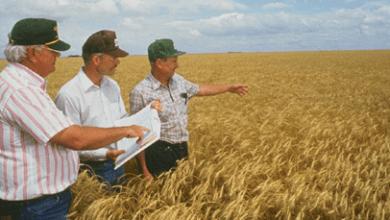 Photo of Agricultores de EEUU: queremos más comercio, no aranceles