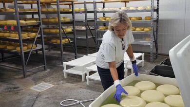 Photo of ¿Cuánto queso exporta Estados Unidos a México?
