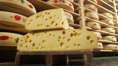 Photo of Los 55 quesos que protegió la Unión Europea en el TLCUEM 2.0