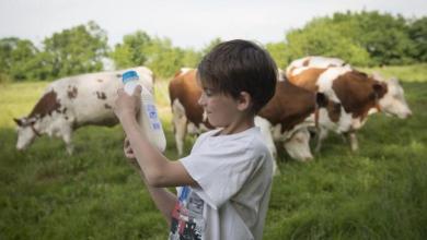 Photo of México abrirá cupo para 50,000 ton de leche en polvo a la UE