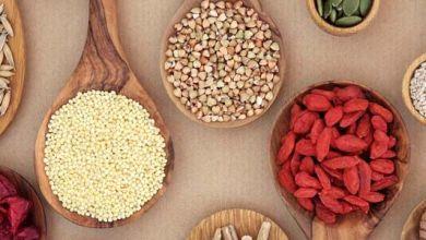 Photo of Los 10 mayores exportadores de alimentos del mundo