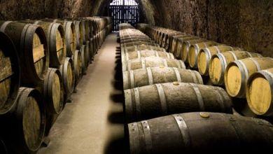 Photo of Importaciones mexicanas de vino tienen máximo histórico