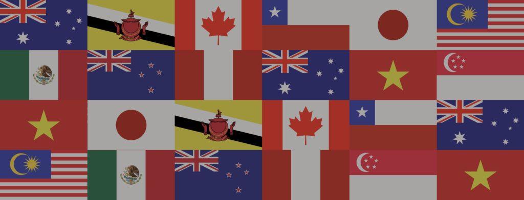 Australia prioriza la región del CPTPP para sus exportaciones de carne de res.