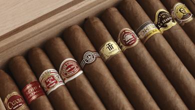 Photo of Cuba bate récord en ventas de puros: US$ 537 millones