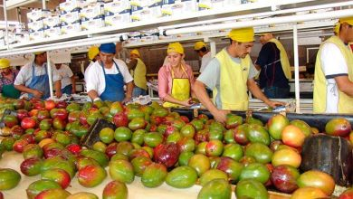 Photo of El 0.1% de las empresas en México realiza 88.6% de las exportaciones
