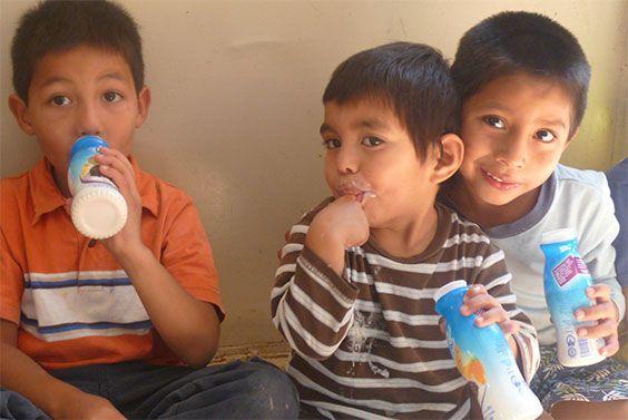 Los principales competidores de la empresa en la producción de leche y en otras de las principales categorías de lácteos en México son: Alpura, Marcas Privadas, Santa Clara, Zaragoza y Sello Rojo en cuanto a leches; Danone, Sigma, Alpura y Yakult respecto a yogurt; y Sigma, Kraft, Marcas Propias, y Esmeralda en lo referente a Quesos.