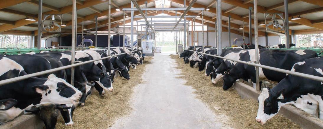 Canadá cobra altos aranceles a sus importaciones de productos agrícolas.
