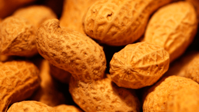 Peanut imports from Mexico would reach 235,000 tons in the 2019-2020 cycle, which ends in August, a similar amount for the 2020-2021 season, projected by the United States Department of Agriculture (USDA).