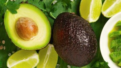 Mexico's avocado exports registered a year-on-year growth of 29.4% in the first quarter of the year, according to data from Banco de México.