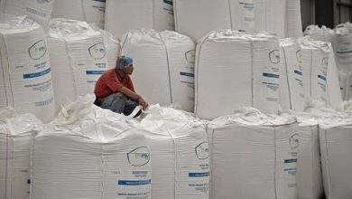Photo of Mexico would increase its sugar production 19%: USDA