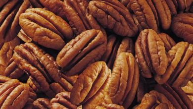 Mexico, exports, walnut, Secretary of Agriculture, demand, products, peanuts, walnut, volume, peanuts, walnuts, industry, harvest, United States, The Kraft Heinz Company, brand, Planters, Treehouse Foods, John B. Sanfilippo & Son, processors, snacks, brand, Diamond, markets, price, quality, customer service, product line, the distribution method, sales promotion, shelling industry, package, raw materials, automation, equipment,