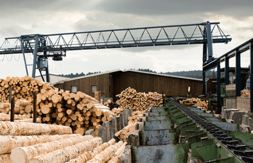 A dispute settlement panel at the World Trade Organization (WTO) found that the United States improperly applied countervailing duties on Canadian softwood lumber.