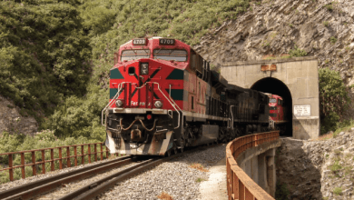 Grupo México depends on a limited number of suppliers of fuel and basic rail equipment, such as locomotives, rolling equipment, rails and sleepers.