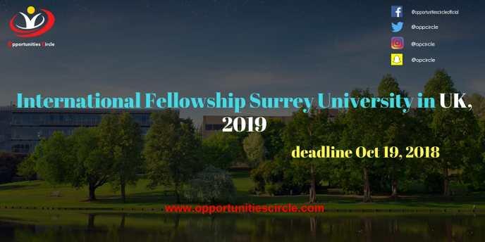 International Fellowship Surrey University in UK 2019 300x150 - International Fellowship Surrey University in UK, 2019