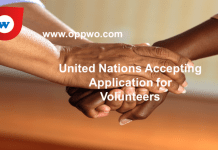 United Nations Accepting Applications for Volunteers