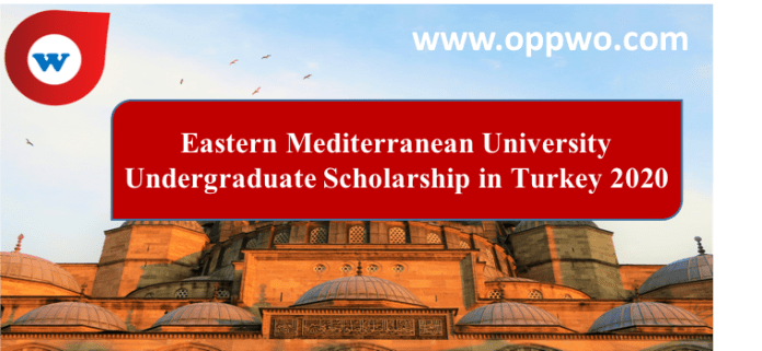 Eastern Mediterranean University Undergraduate Scholarship in Turkey 2020