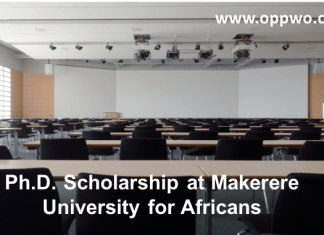 Ph.D. Scholarship at Makerere University for Africans