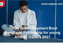 Youth in Development Boot Camp and Fellowship for young African leaders 2021