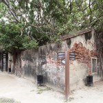 Anping Tree House - 安平樹屋