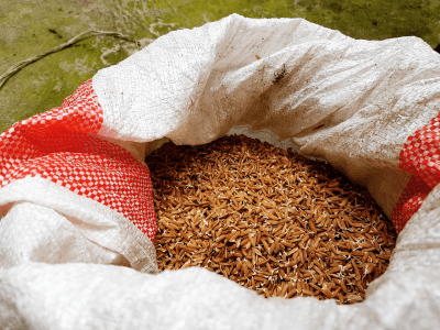 Increase Heart Health With Red Yeast Rice