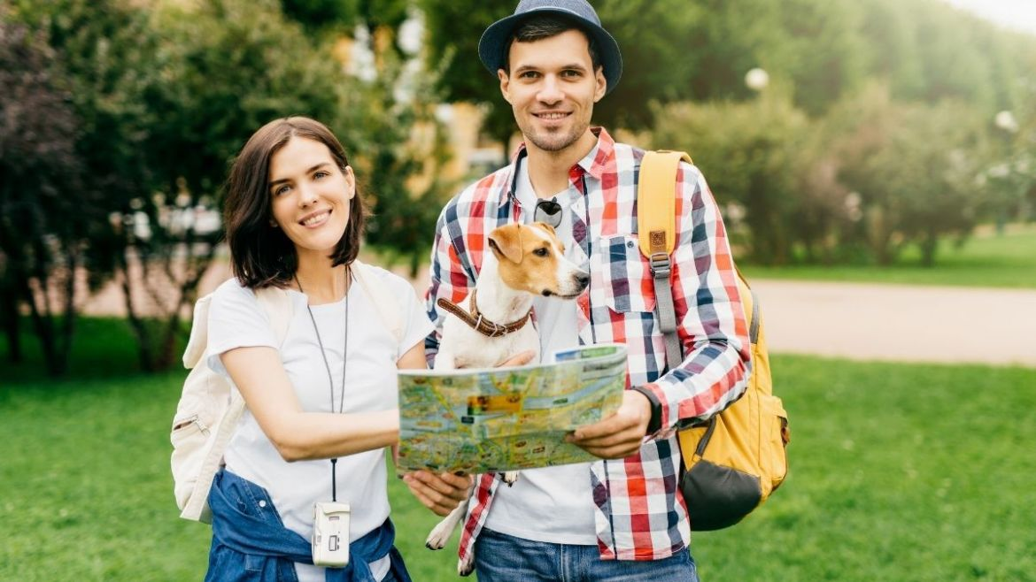 Important Checklist to Ensure Safety while Travelling with Pets