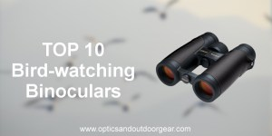 Top 10 Bird-watching Binoculars (2018)