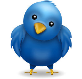 Twitter guidelines for business