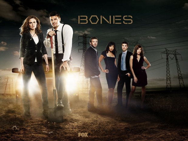 bones_wall05_1600x1200