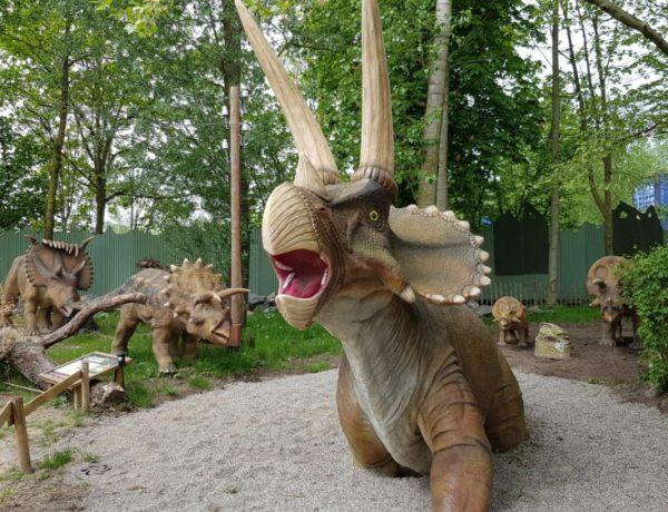 dino-dinosaurus-uitjes-nederland-museum
