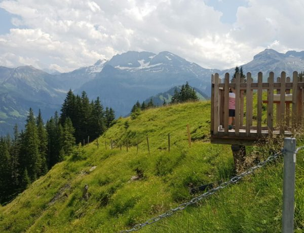 murmelitrail-lenk-betelberg-zwitserland-themawandeling-kinderen