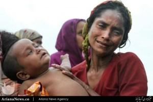 روهینگیا (1)
