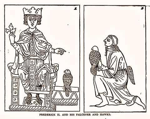 Federico II di Svevia né così né cosà